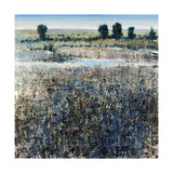 Fresh Water Giclee Print by Tim O'toole