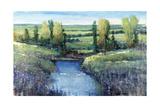 Hidden Pond Giclee Print by Tim O'toole
