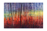 Shimmering Trees Giclee Print by Tim O'toole
