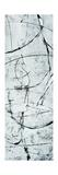 Atomic III Giclee Print by Clayton Rabo