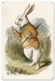 Alice in Wonderland - The White Rabbit Blechschild