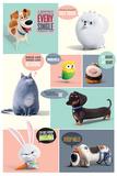 Secret Life Of Pets- Secret Desires Pôsters