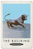 The Bull at Birmingham's Bullring Tin Sign