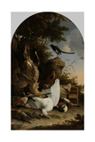 A Hunters Bag Near a Tree Stump with a Magpie, known as the Contemplative Magpie Prints by Melchior d'Hondecoeter