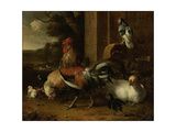 Poultry Yard Prints by Melchior d'Hondecoeter