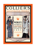 Collier's Illustrated Weekly. Woman's Number, New York, November 15th, 1902 Posters by Edward Penfield