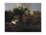 View of a Forest Prints by Jan van Kessel