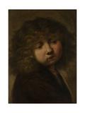 Head of a Boy Posters by  Rembrandt van Rijn