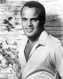 Harry Belafonte in White With Flower background Photo by  Movie Star News