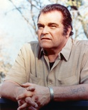 Brian Dennehy Siiting in Polo Portrait Photo by  Movie Star News
