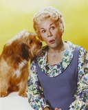 Bea Benaderet in Blue Dress with Dog Portrait Photo by  Movie Star News