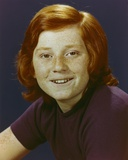 Danny Bonaduce Close Up Portrait wearing Violet Shirt Photo by  Movie Star News