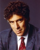 Elliott Gould Posed in Suit and Tie Photo by  Movie Star News
