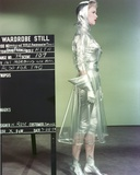 Anne Francis standing Facing Side View in Silver Glossy Dress Photo by  Movie Star News