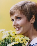 Florence Henderson with Sunflower Portrait Photo by  Movie Star News
