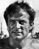 Robert Conrad Close Up Portrait Photo by  Movie Star News