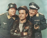 Hogan's Heroes Portrait in Army Uniform Photo by  Movie Star News