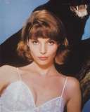 Elsa Martinelli Posed in Lingerie Photo by  Movie Star News