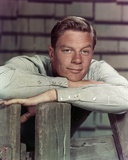 Peter Graves Leaning in Classic Portrait Photo by  Movie Star News