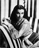 Vivien Leigh Seated on Striped Couch Photo by  Movie Star News