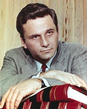 Peter Falk wearing Formal Suit Portrait Photo by  Movie Star News