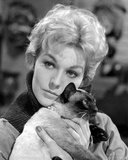 Kim Novak Holding Cat Portrait Photo by  Movie Star News