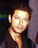 Jeff Goldblum Posed in Dark Polo Photo by  Movie Star News
