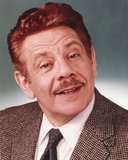 Jerry Stiller Portrait in Brown Gingham Suit and Black Necktie Photo by  Movie Star News