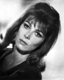 Lee Grant Close Up Portrait in Classic Photo by  Movie Star News