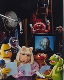 Jim Henson Hanging Out with Sesame Street Cast Photo by  Movie Star News