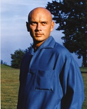 Yul Brynner Posed in Blue Long sleeves Photo by  Movie Star News