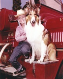 Lassie Portrait with A Boy posed on Red Car Photo af Movie Star News