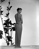 Vera Miles photographed in front of plant designed background, looking over her shoulder to the cam Photo by  Movie Star News