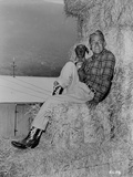Alan Ladd sitting on a Hay Stack with a Dog in Black and White Portrait Photo by  Movie Star News