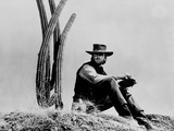 Clint Eastwood sitting in Front of Cactus, wearing Cowboy Outfit Photo by  Movie Star News