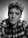 Burt Lancaster wearing a Checkered Polo Close Up Portrait Photo by  Movie Star News