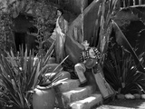 Bebe Daniels Walked on the Stairs while a Man Wooing Her with Guitar Music Photo by  Movie Star News