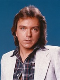 David Cassidy Portrait in White Coat Photo by  Movie Star News