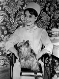 Audrey Hepburn Charade Movie Scene Photo by  Movie Star News