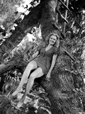 Brenda Joyce sitting on a Tree Photo by  Movie Star News