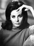 Barbara Parkins Close Up Portrait wearing A Sweater Photo af Movie Star News