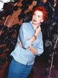 Deborah Kerr Candid Shot Photo by  Movie Star News