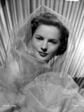 Colleen Gray on a Netted Veil Portrait Photo by  Movie Star News