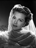 Cyd Charisse Posed in Net Dress with Veil Portrait Photo by  Movie Star News