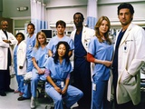 Grey's Anatomy Family Picture Photo by  Movie Star News