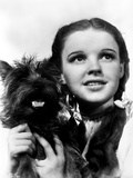 Dorothy Gale Holding Toto Wizard of Oz - Photograph Black & White Photo by  Movie Star News