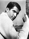 George Hamilton Posed in White Shirt Photo by  Movie Star News