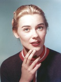 Hope Lange in Brown Sweater on Gray Background Photo by  Movie Star News