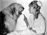 Hayley Mills with Dog in Classic Portrait Photo by  Movie Star News