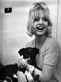 Goldie Hawn Caring Puppy hugging Portrait Photo by  Movie Star News